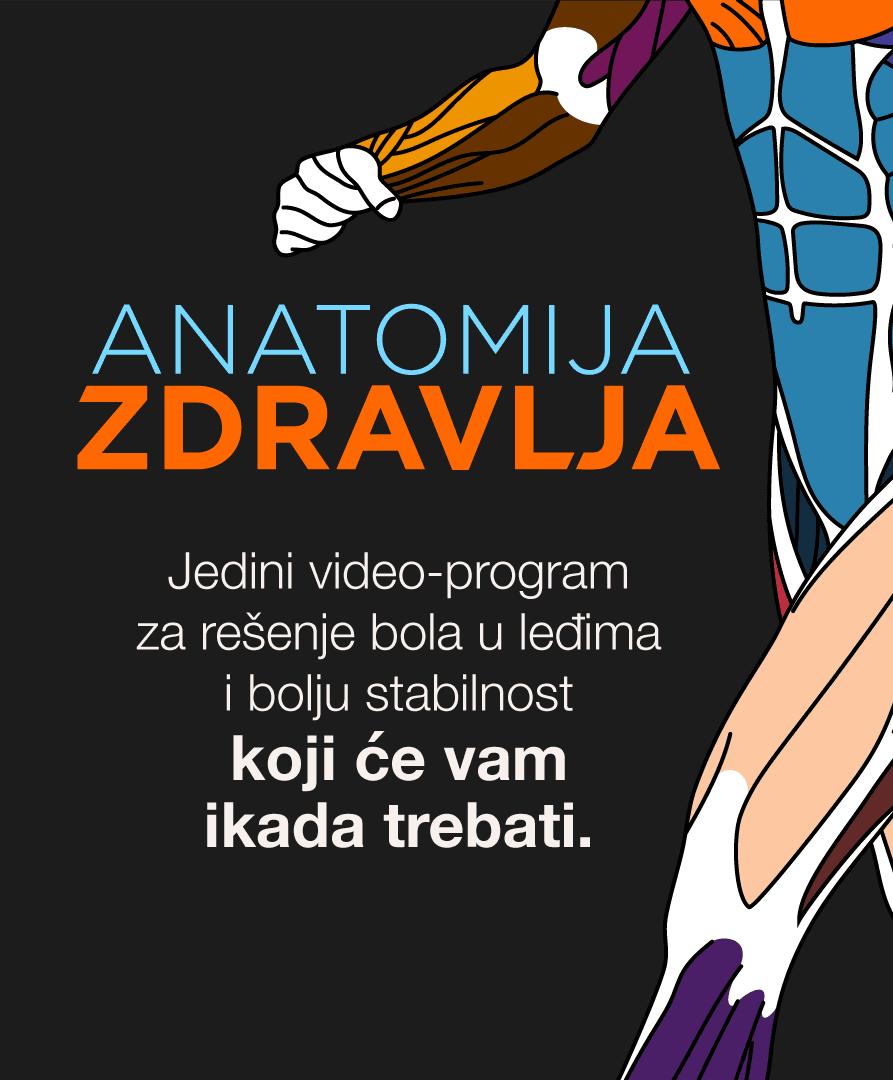 anatomija-zdravlja-baner-sajt