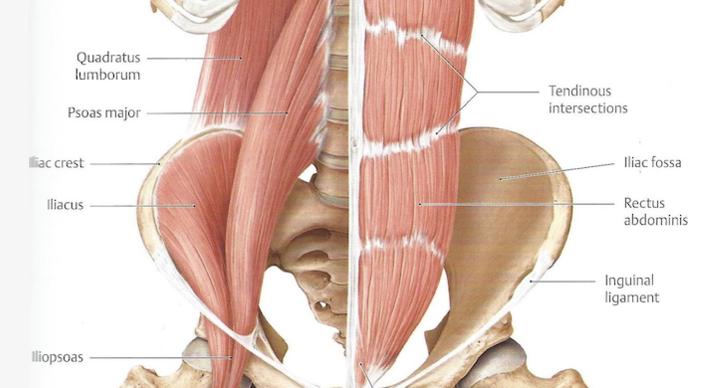 PIRIFORMIS – Kako da rešite uzrok bola u donjem delu leđa