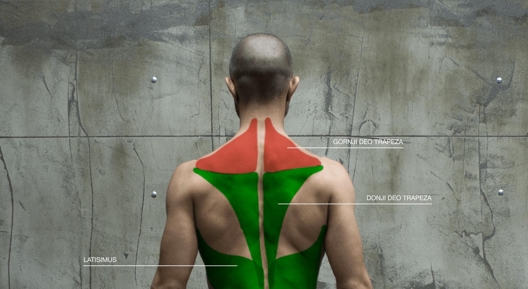 Problemi sa držanjem – kifoza
