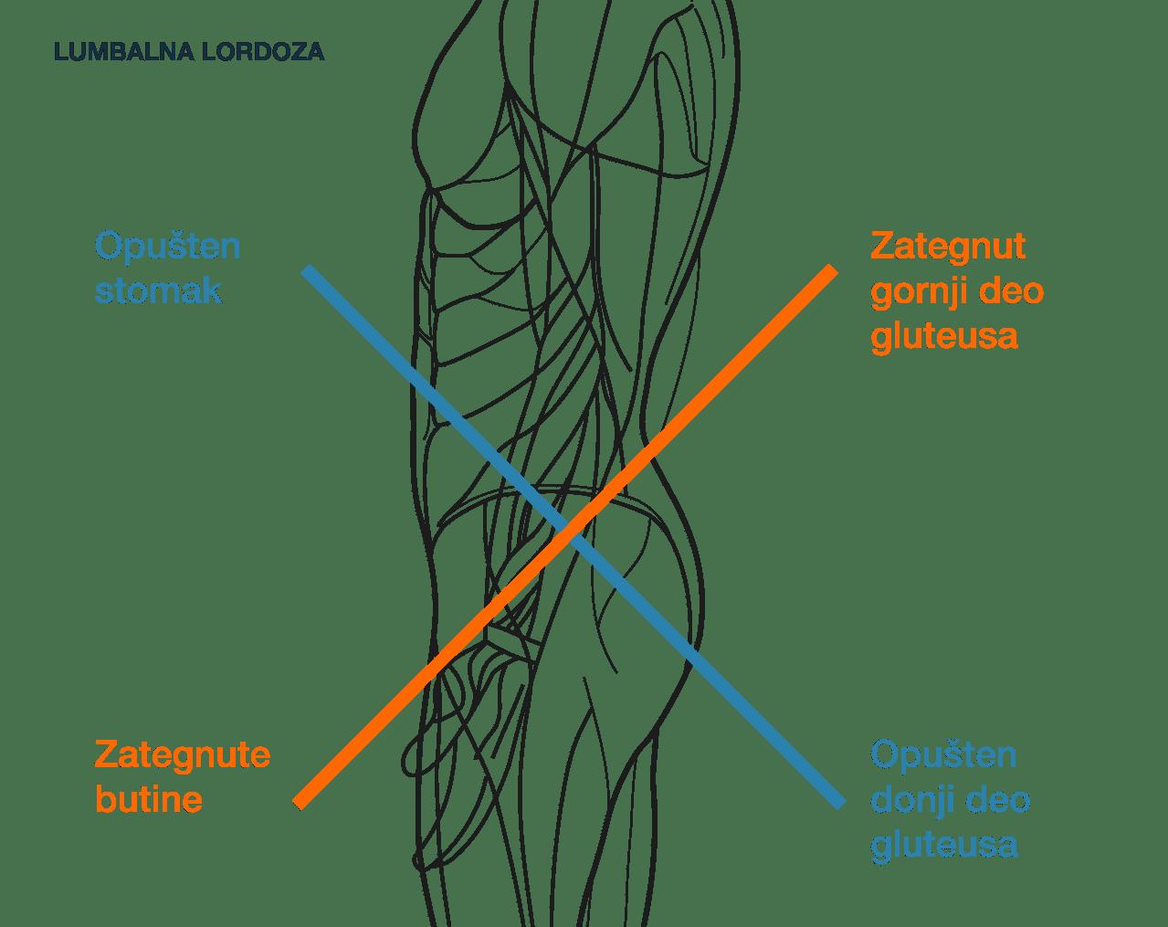 Vežba za aktivaciju stomaka kod lumbalne lordoze